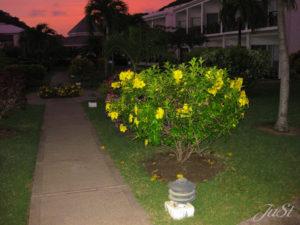 Bild Sonnenaufgang auf Grenada