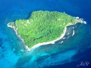 Bild Insel in den Grenadinen