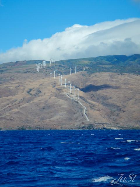 Bild Maui vom Wasser mit Windrädern