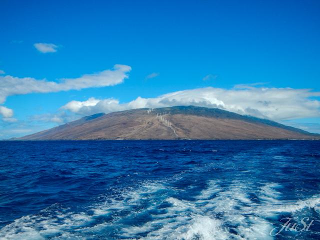 Bild Maui vom Wasser