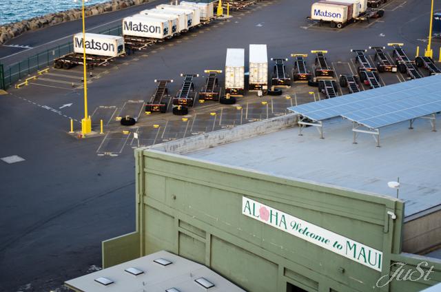 Bild Hafen von Maui 2