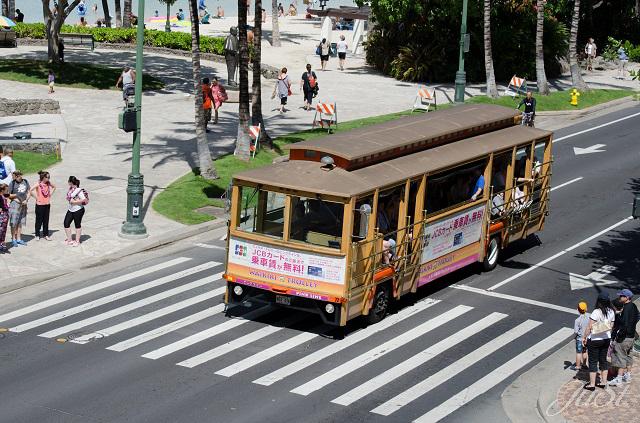 Bild Bus in Honolulu 2