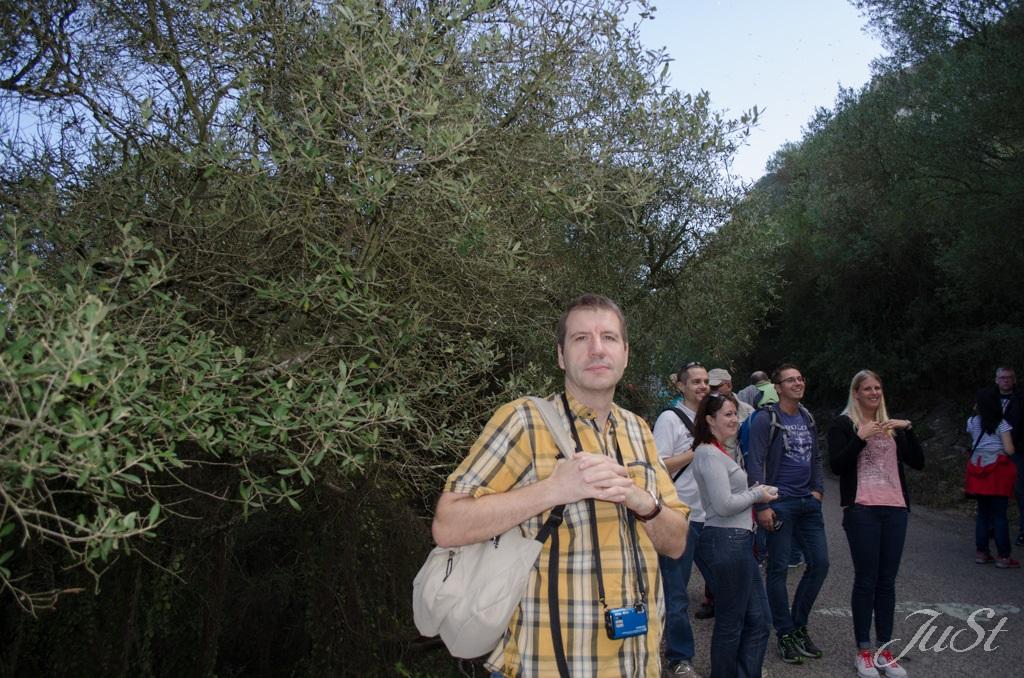 Bild Alex auf dem Weg zu den WW2-Höhlen