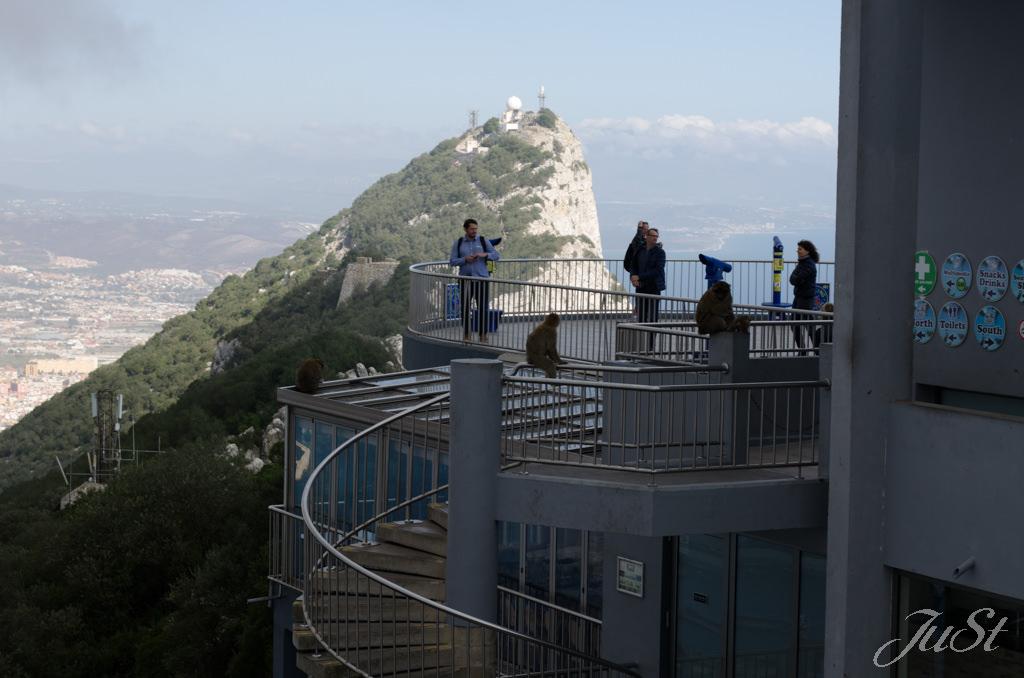 Bild Aussichtsplattform am Affenfelsen