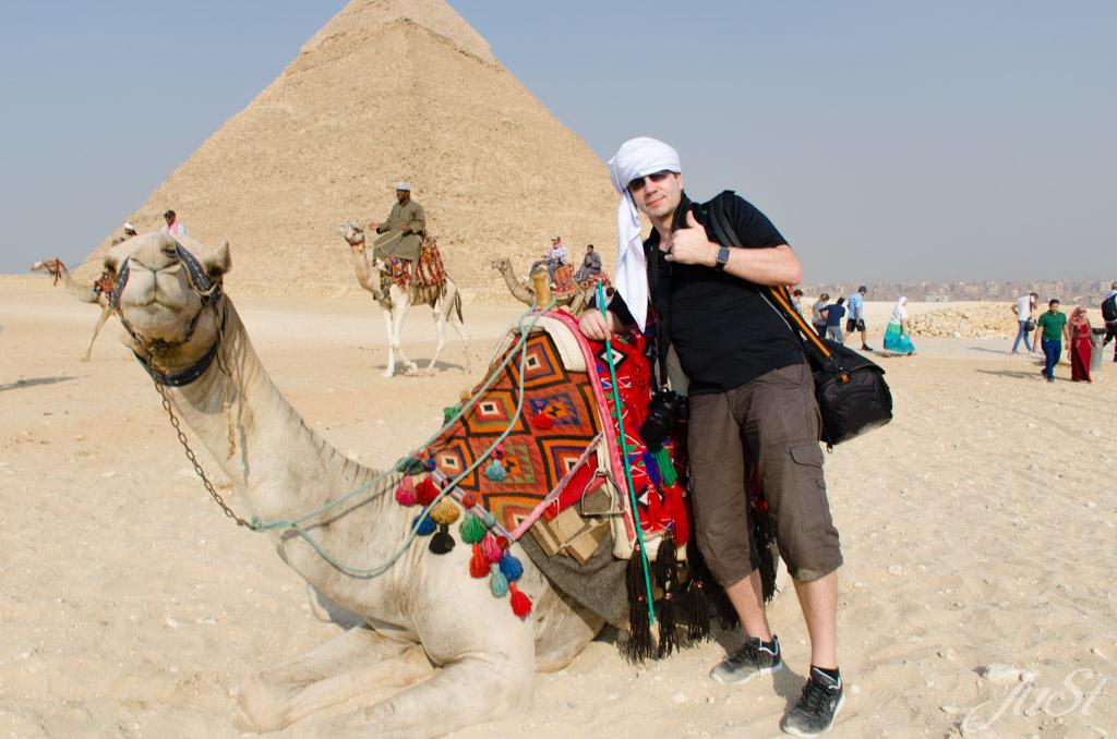Alex und das Kamel