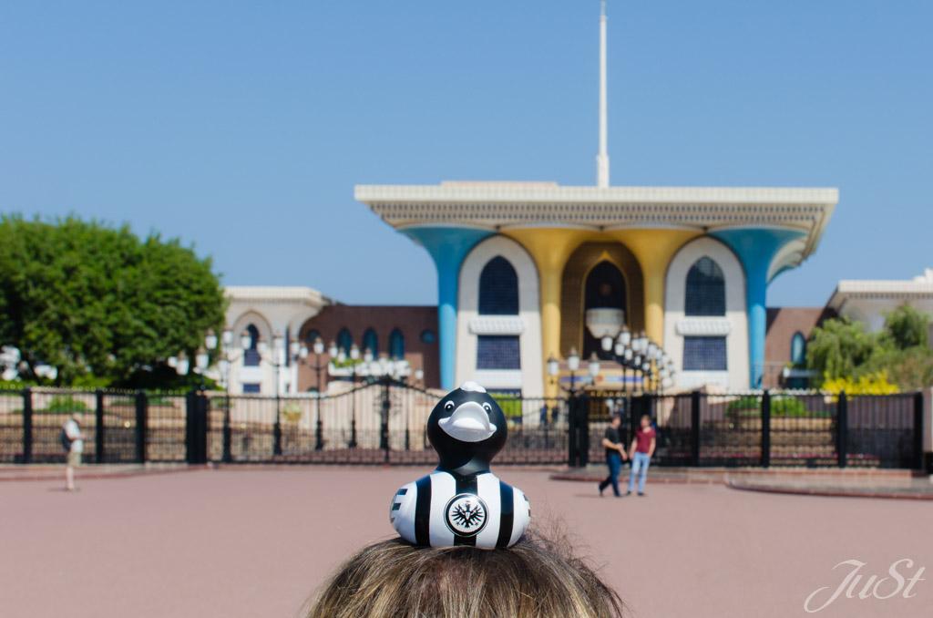 Ente vor Palast in Muscat