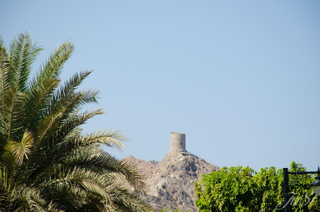 Turmruine Muscat