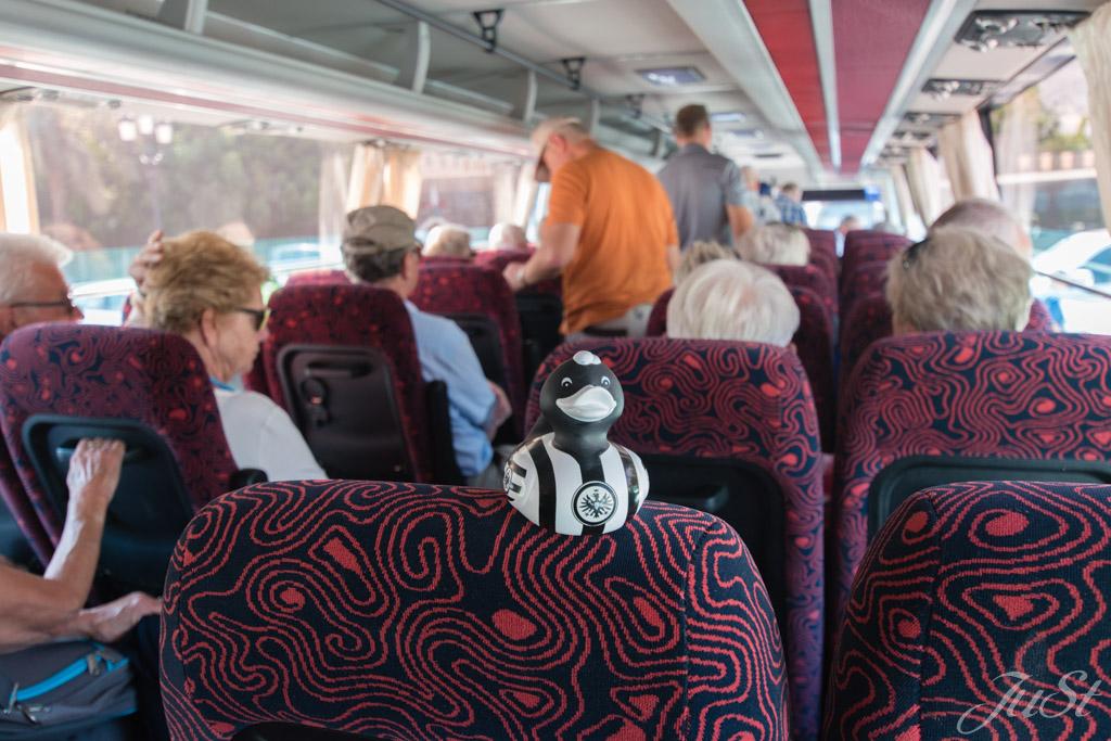Ente in Muscat im Reisebus