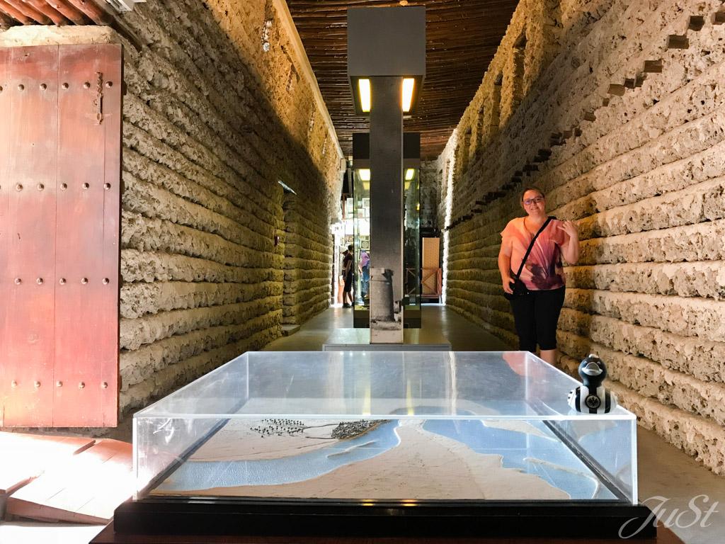 Ente im Dubai Museum