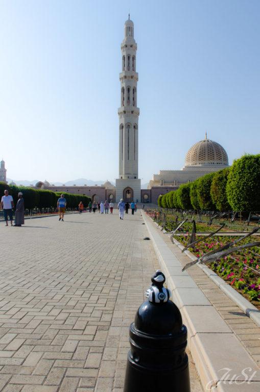 Ente vor Muscat Moschee