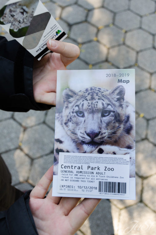 Zoo im Central Park New York