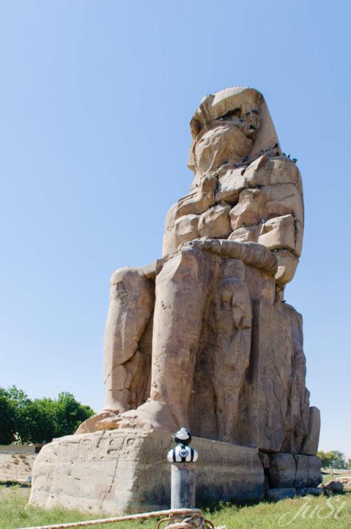 Ente vor Memnon-Kolos
