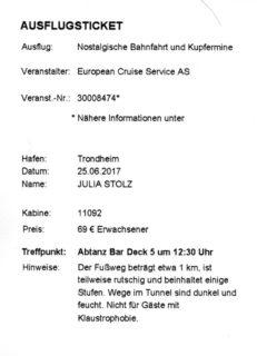 Bild Ticket Ausflug Trondheim
